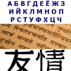 The Monolingual Mind