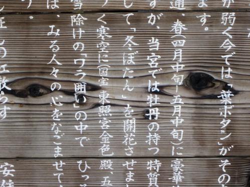 japan-1771624_1280
