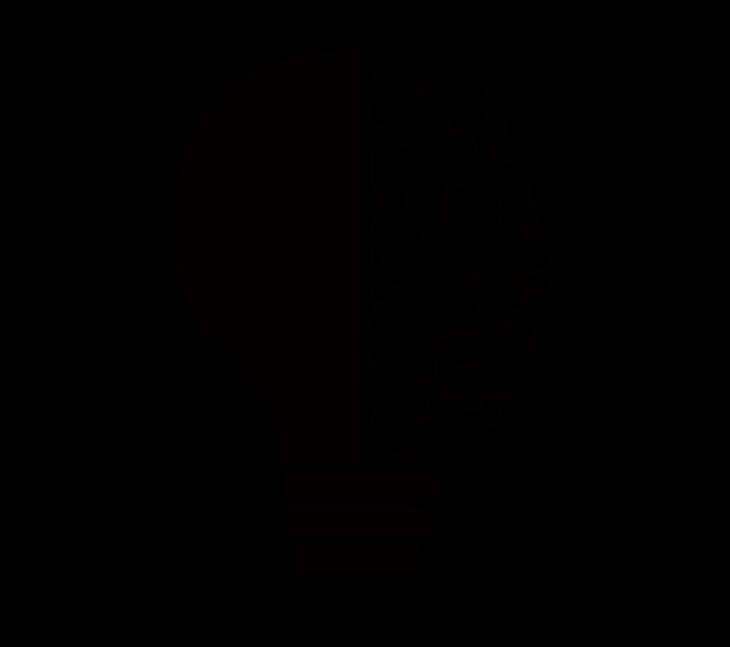 cranium-2099128_1280.png
